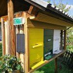 A méhkas skála segítségével figyelje a kaptár súlyát